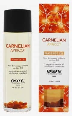 Massage Exsens - Organic Massage Oil w. Stones Apricot